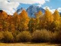 Fall - June Lake Loop - Joe Morin.jpg