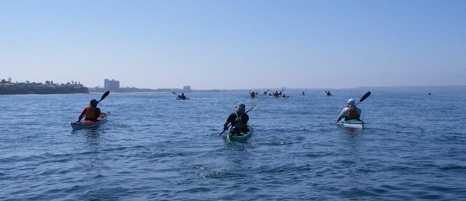 A large group on a coastal paddle